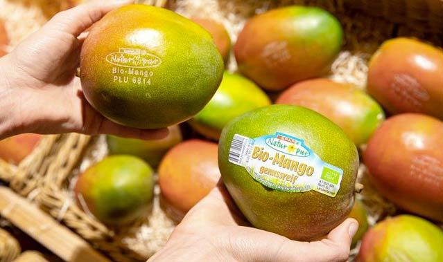 Etichette della frutta