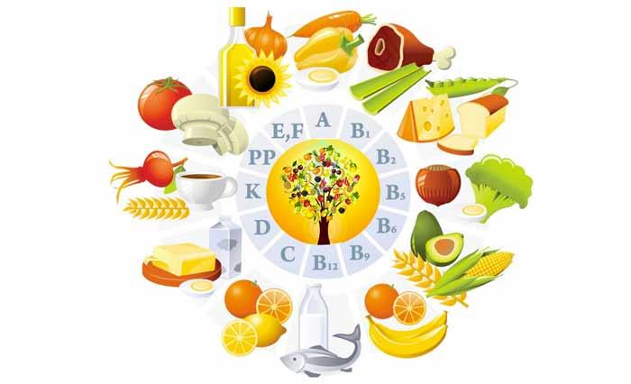Ruolo e funzioni delle vitamine