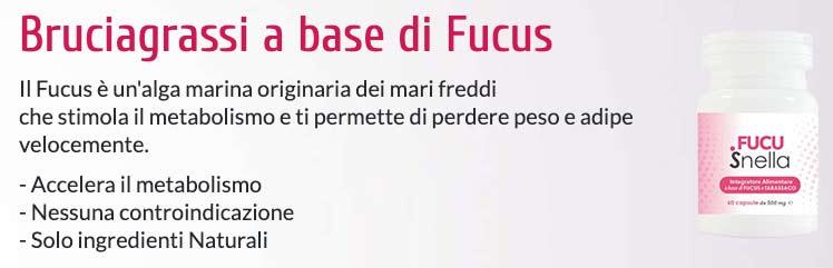 Benefici dell integratore Fucusnella