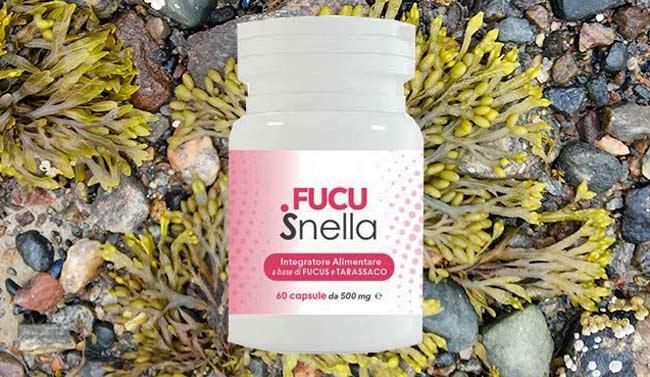 Ingredienti di Fucusnella