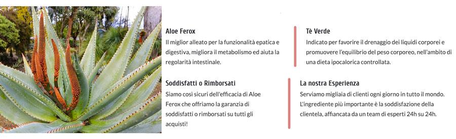 Ingredienti di Aloe Ferox